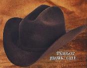 4X Sintió Occidental Vaquero