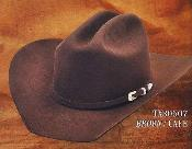 Texas Estilo 4X Sintió