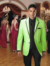 Verde Terciopelo y Negro